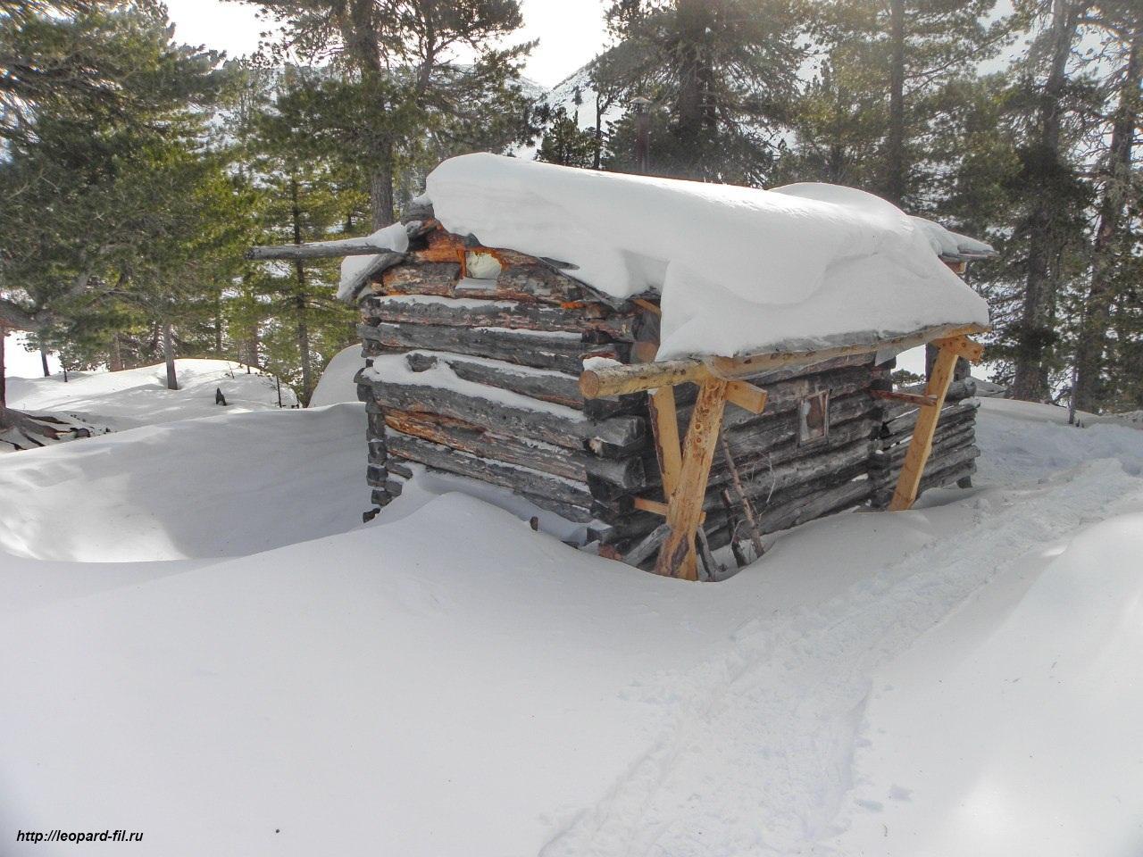Факторы эффективной зимовки в условиях долговременных лагерей и поселений