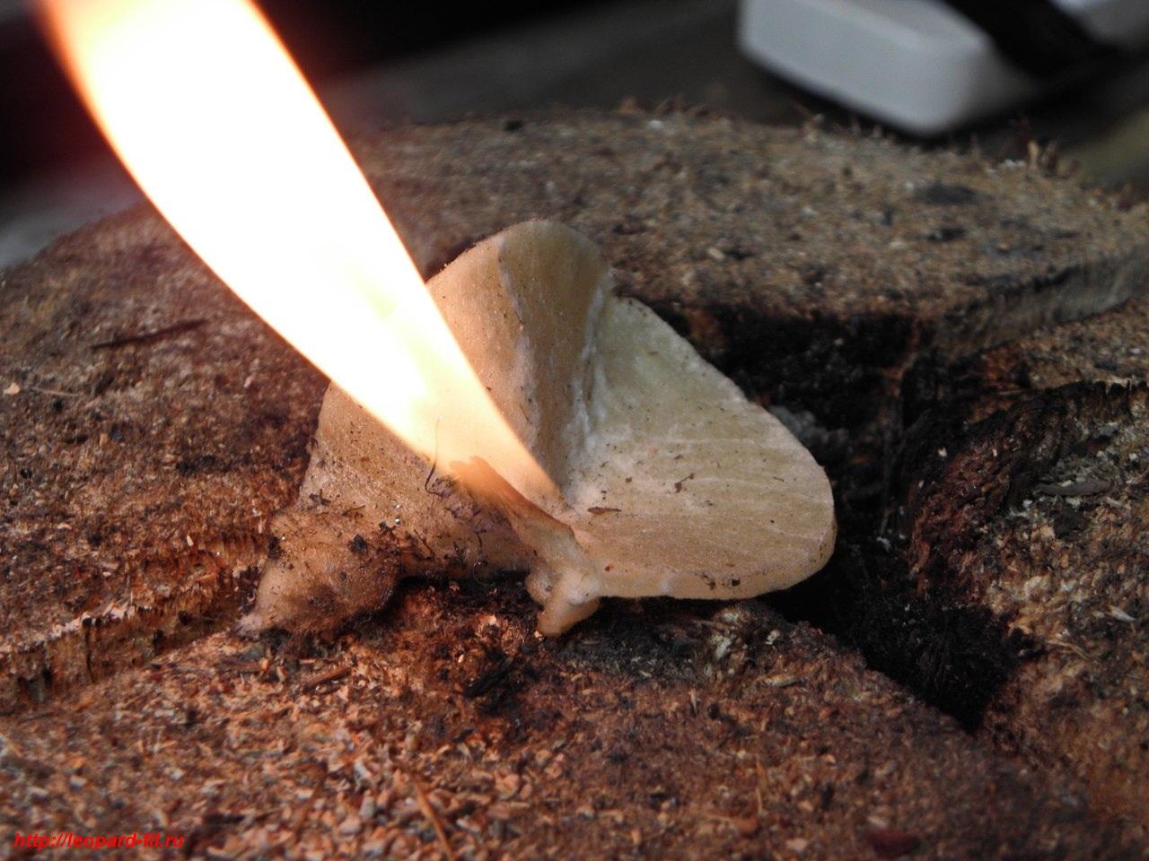 Растопка трут для костра, вариант 1