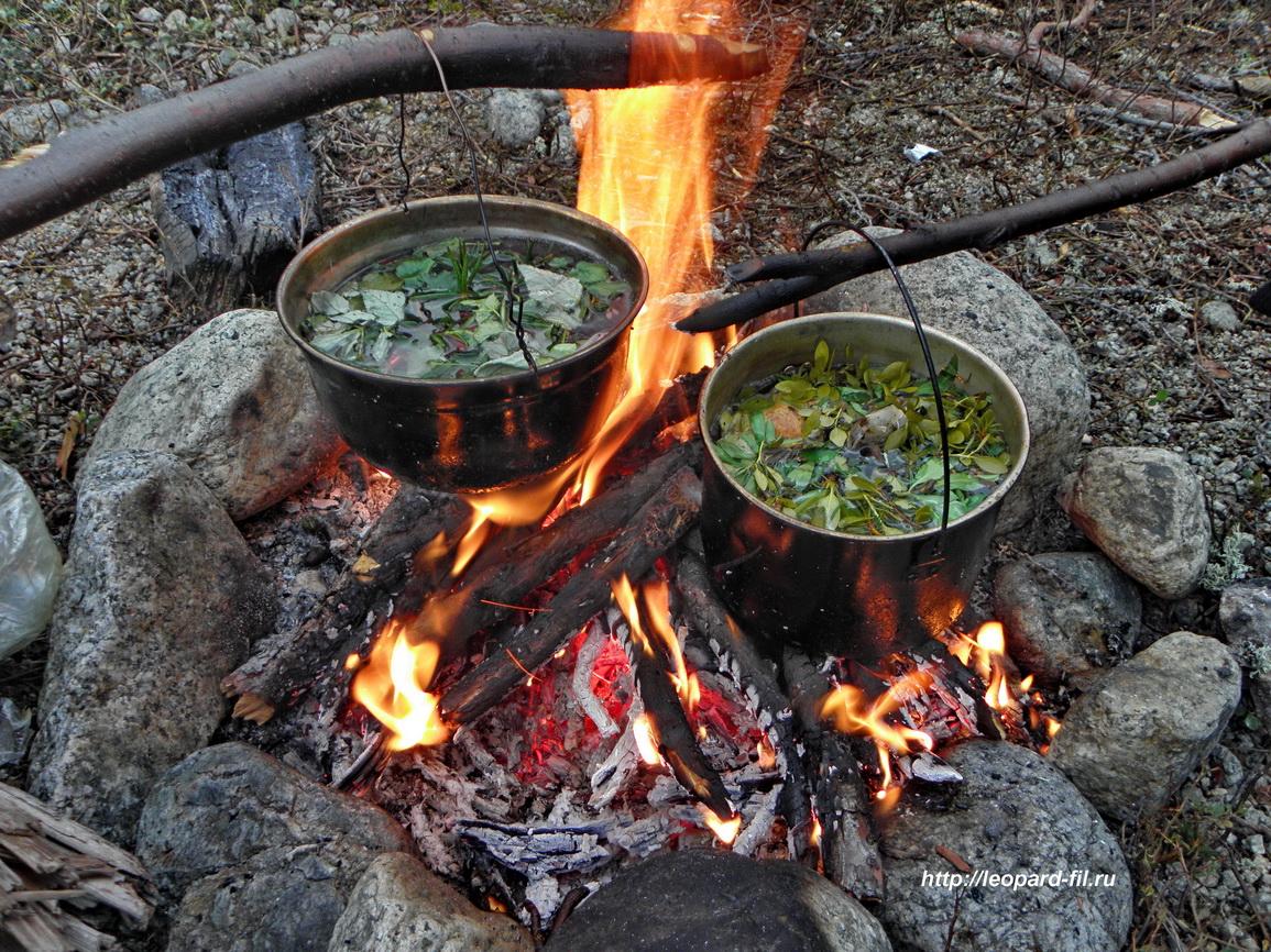 Как приготовить Иван-чай в походных условиях