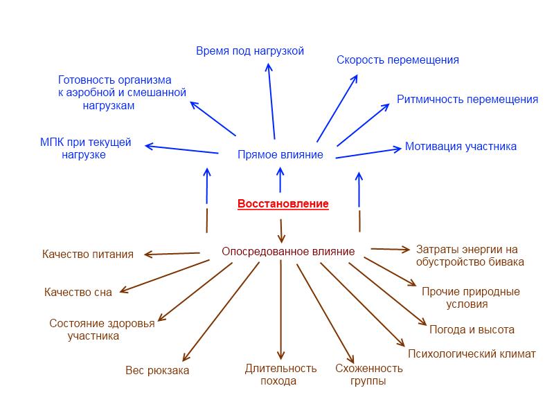 Факторы восстановленияорганизма при продолжительной циклической нагрузке
