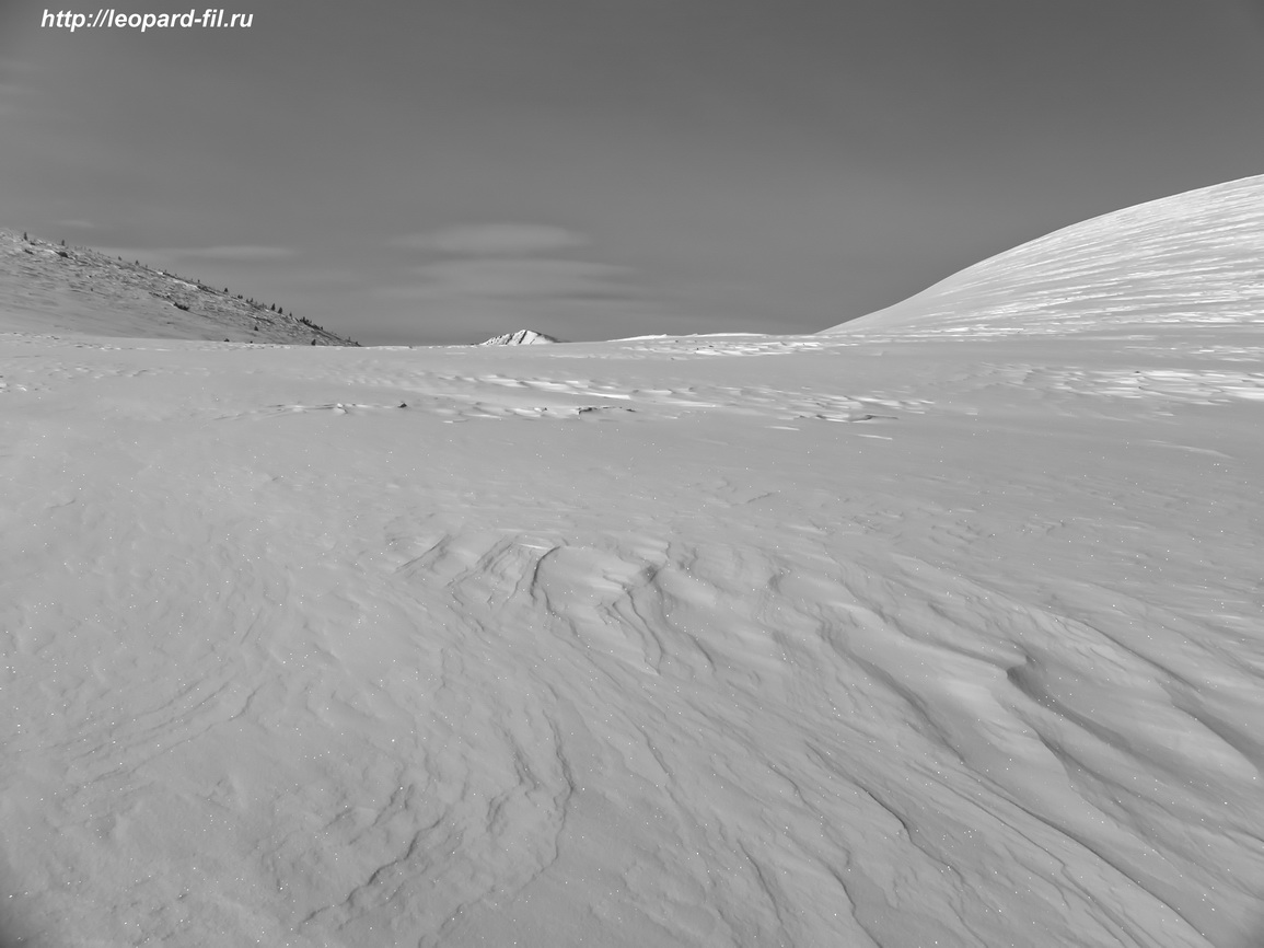 Пеммикан в полярных экспедициях прошлого и общая калорийность полярного пайка