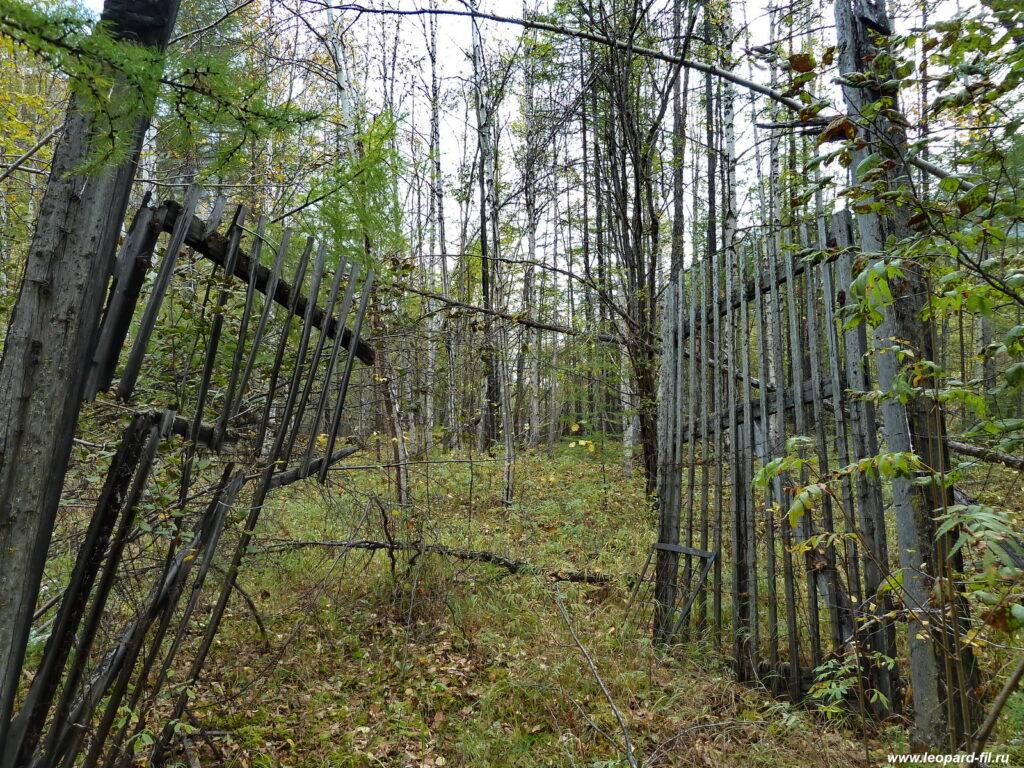Ворота в лагерь з/к на обогатительной фабрике