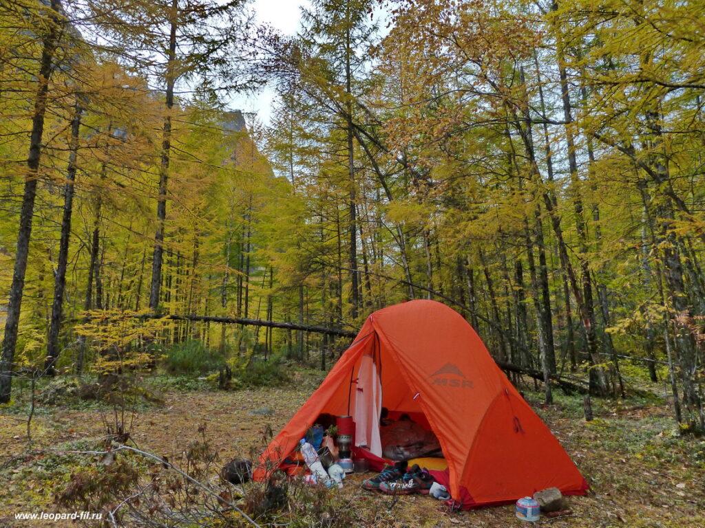 Подробный обзор (отзыв) палатки MSR Access 1